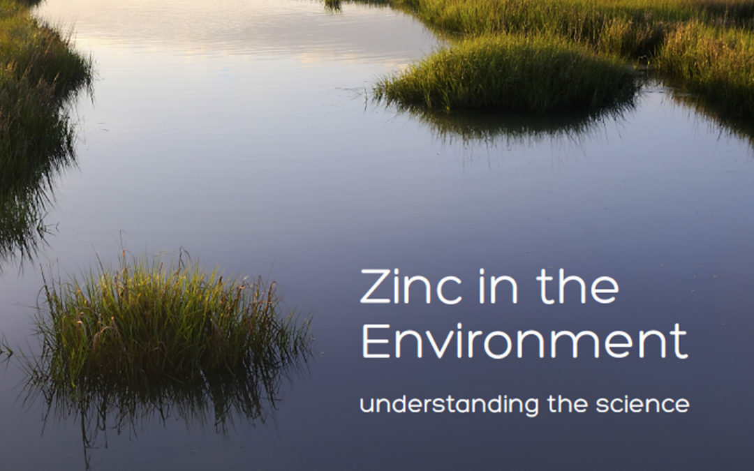 Zinc in the Environment: Understanding the Science